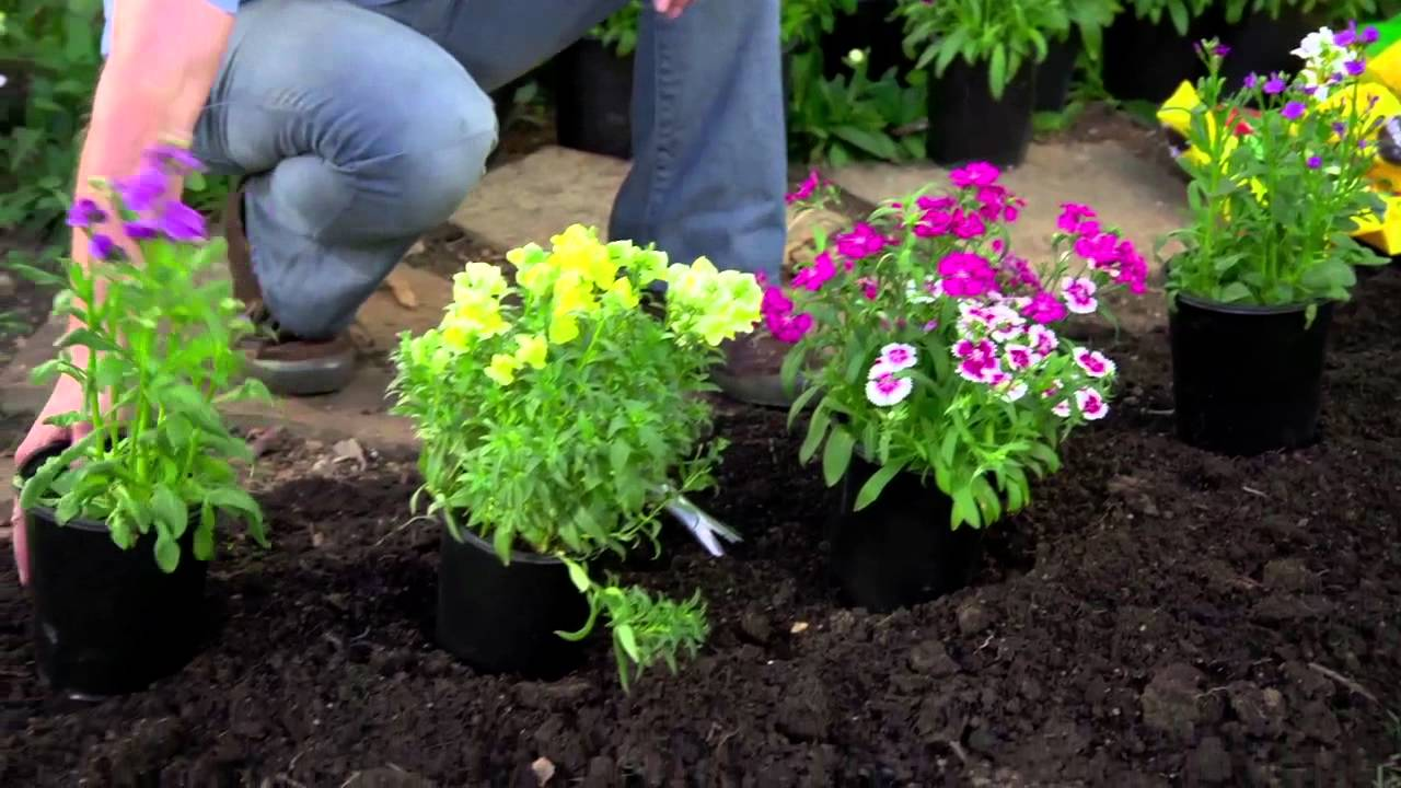 Tremendous Garden soil albuquerque