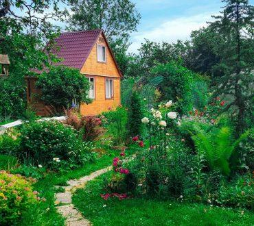 summer wooden house on background of green garden